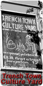 cultureyard2